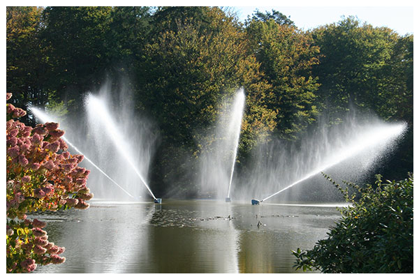 Gallery-F50-Fountain